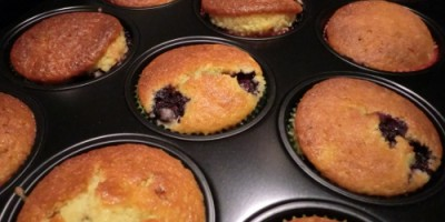 BlauBÄR-Muffins