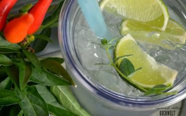 Erfrischungsgetränk - Thymian-Limetten-Limonade