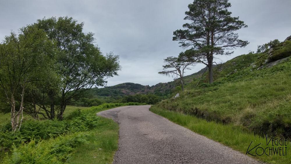 Rundreise 2017 - Loch Morar by Mallaig, Schottland